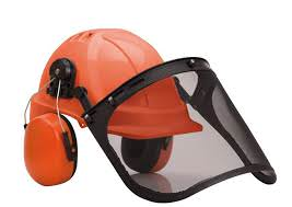 Portwest Forestry Combi Helmet