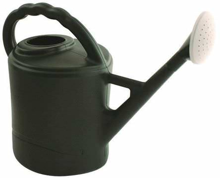 Plastic Watering Can c/w Rose