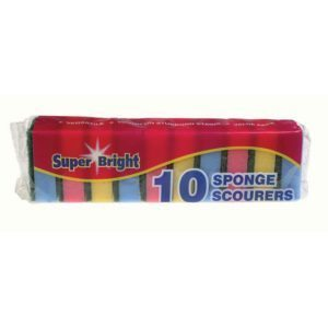 Large Sponge Scourer 10 Pack